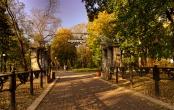 В старом парке